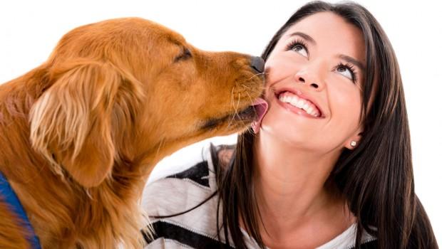 Objetivo é resgatar, pelo olhar de seus donos, as histórias de amor e a relação entre o homem e seu animal