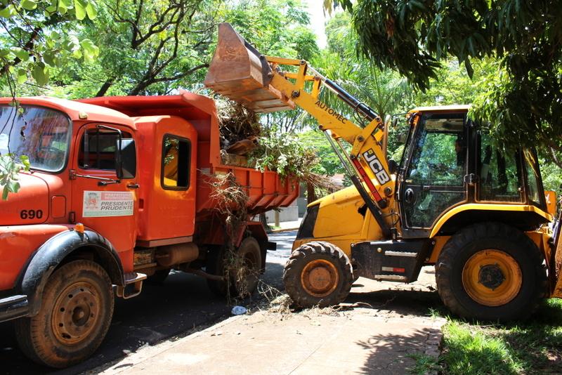 Até o momento, foram exatos 1.031 caminhões de lixo, entre despejo irregular, cata-treco e remoção de galhos