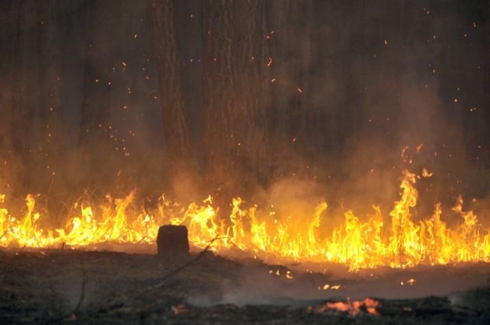 Realizar queimadas próximo às linhas de transmissão constitui crime